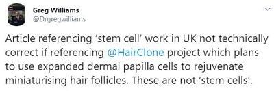 Hair Stem Cells vs Dermal Papilla