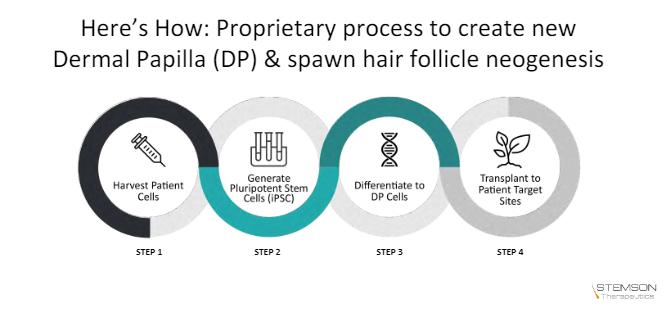Stemson Therapeutics Hair Multiplication